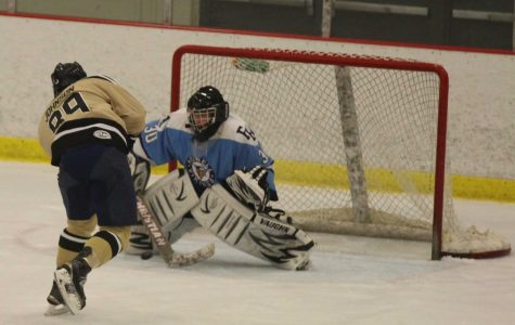 10-30 Hockey Gold Cup Vs. Howell [Photo Gallery]