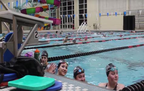 Girls Swim: 2015 Season Preview