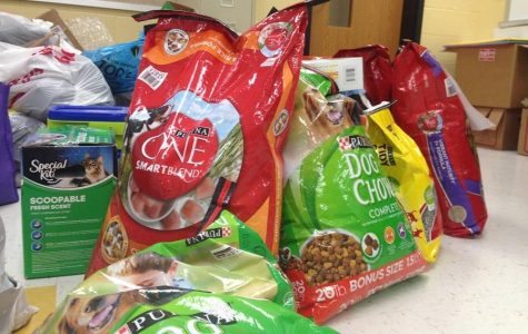 NHS Donating Items to Five Acres Animal Shelter