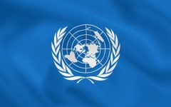 International Corner: The Purpose of Treaty Organizations