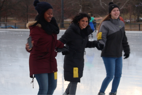 Top 5 Things To Do at Steinberg Skating Rink