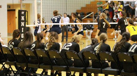 Varsity Girls Volleyball Bench Cheering [Gif]