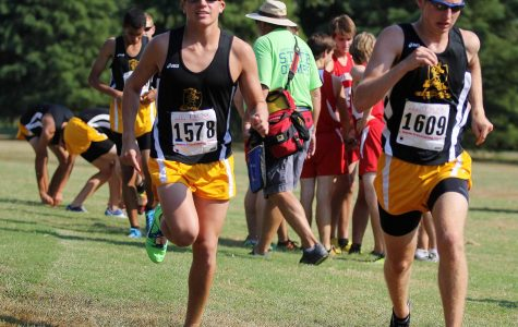 Cross Country State Recap