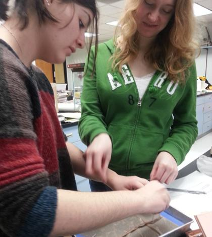 Biology II Classes Dissect Earthworms