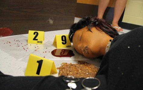Principles of Biomedical Science Classes Investigate Crime Scene