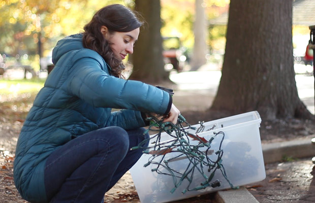 Smithsonian National Zoo Prepares for ZooLights