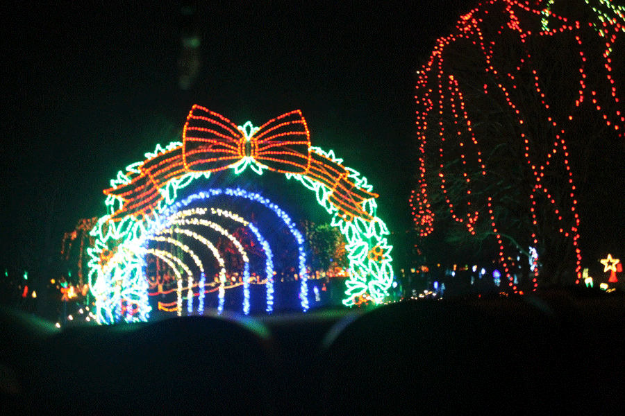 A Winter Wonderland of Lights