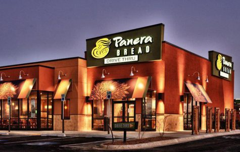 What I'm Interested In: Panera Bread