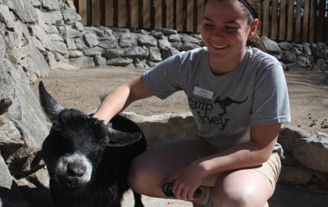 Junior Maggie Cox Volunteers in Zoo ALIVE Volunteer Program at the St. Louis Zoo