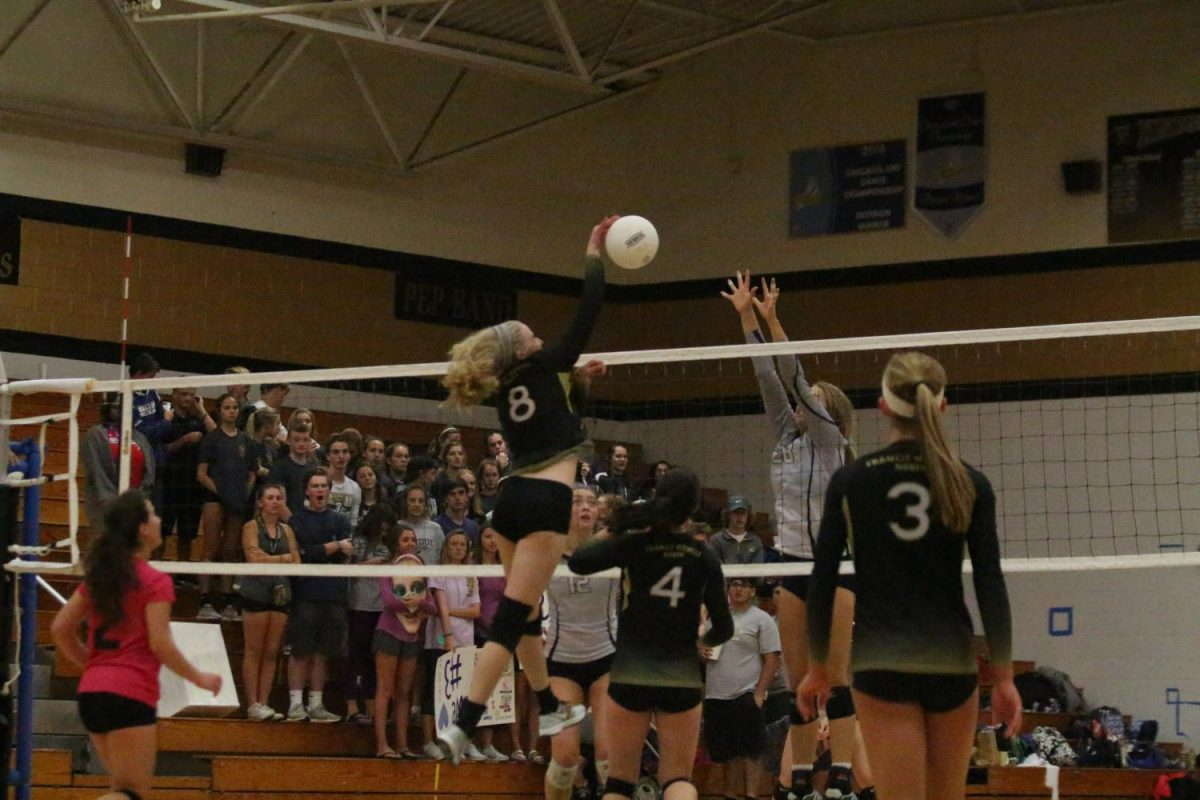 Sophomore Emily Hood spikes the ball over the net (Photo by Wil Skaggs)