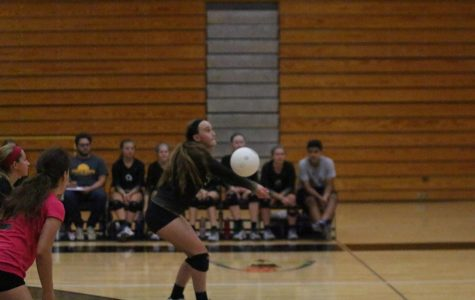 FHN Losing Streak Against FHHS Continues as They Lose in Three Sets