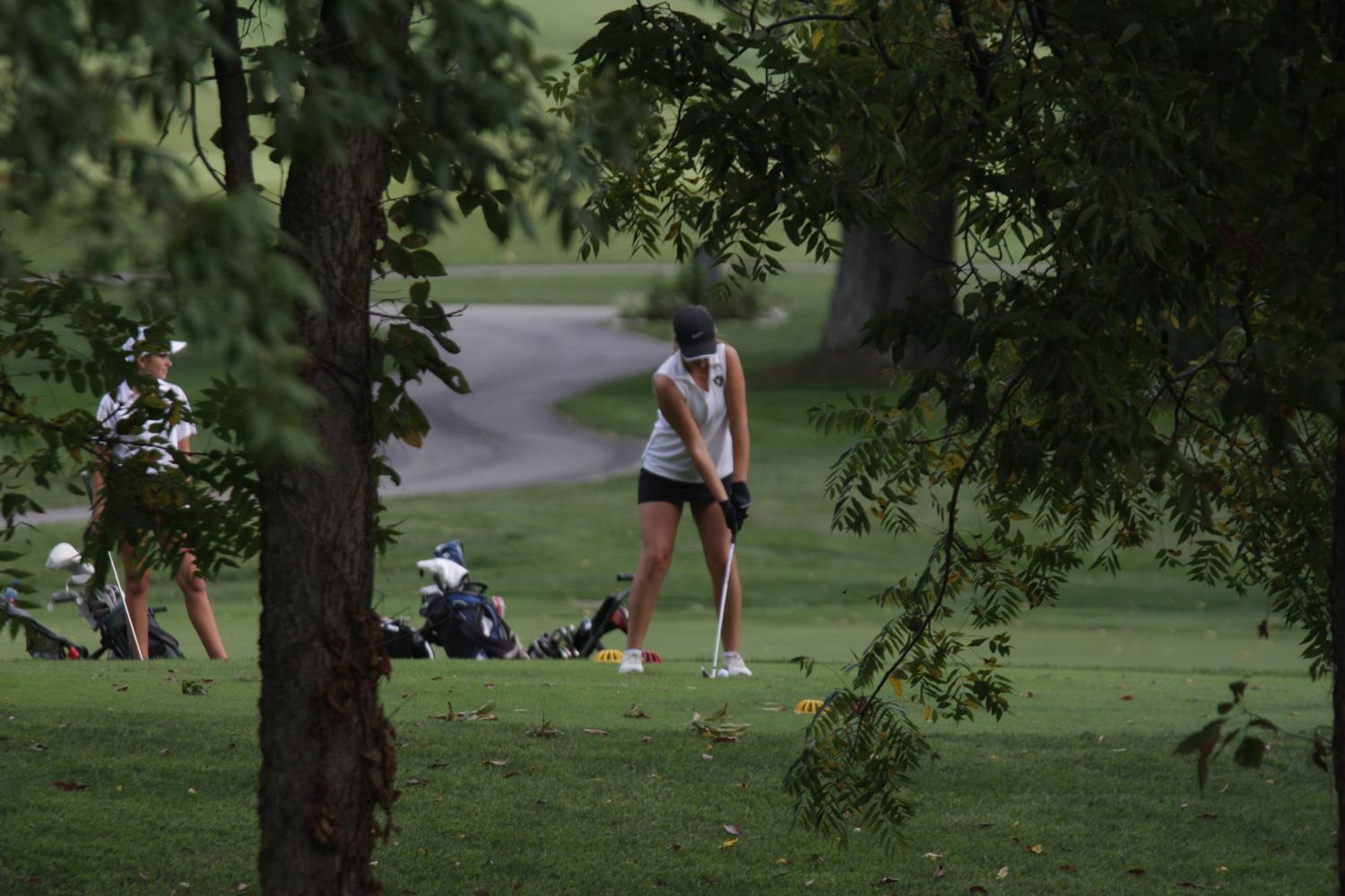 Senior Briana Schmidt takes her stance to tee off at Lake Forest Golf Course    Aug. 31 during her tri-match between Timberland and St. Dominic. Schmidt has been playing varsity golf for FHN since freshman year.
