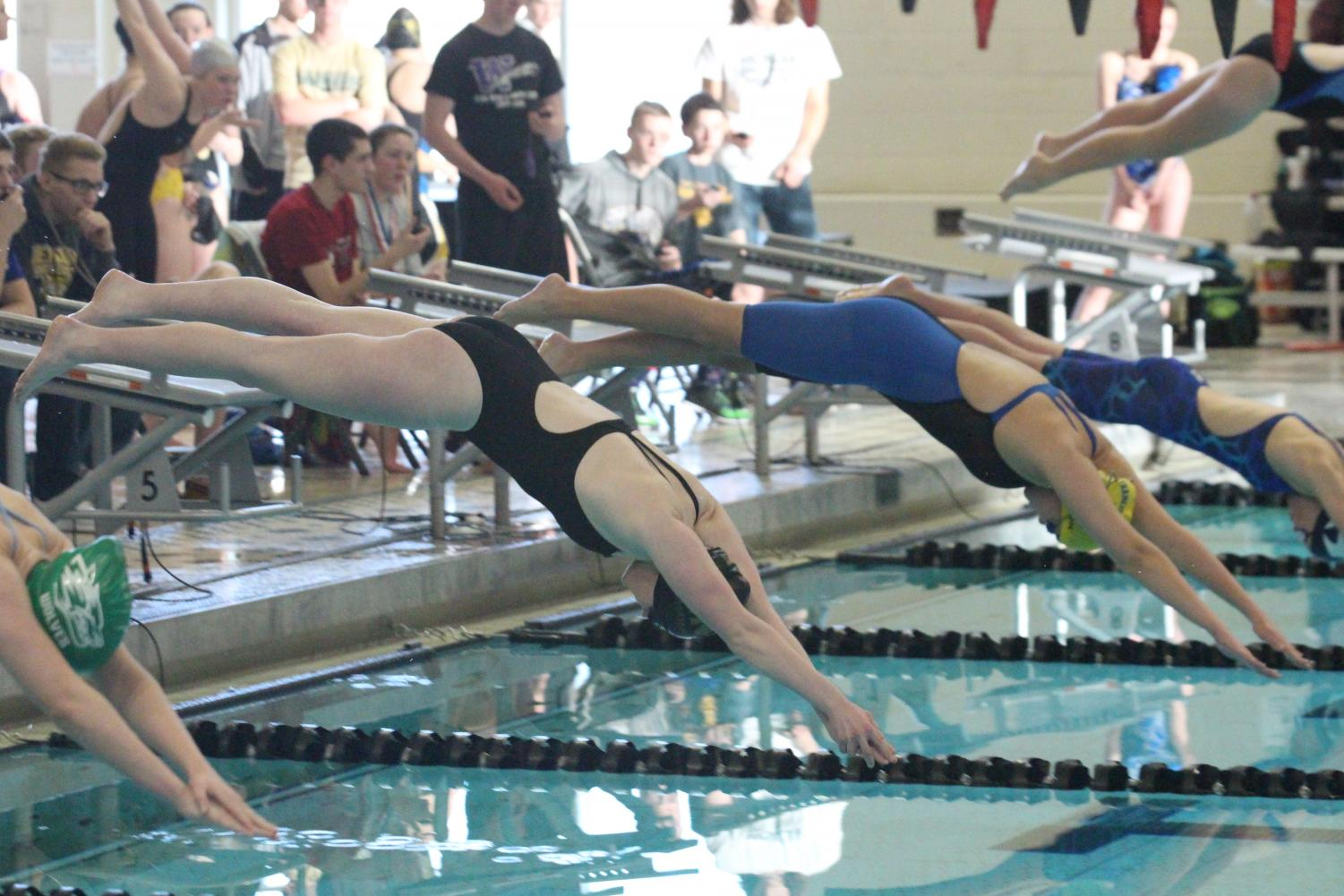 The Knights' girls varsity swim and dive team dive into the pool for their meet on 2/9.