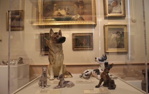 The Kennel Club Museum of Dog sits at 1721 South Mason Road in St. Louis. The museum is open year-round and the admission price is $6 for adults. Visitors are allowed to bring their own dogs to the museum for free.