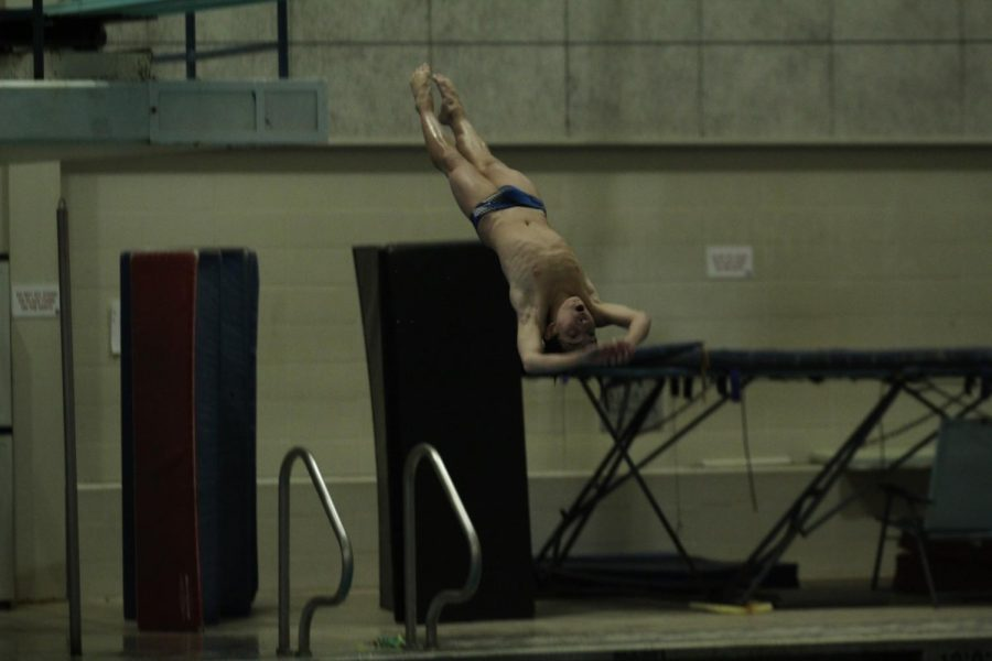 Freshman Logan Schelfaut performs a back dive off the three meter board. Schelfaut has been diving on a club team with dive coach, Greg Triefenbach, for six years. Now in high school with a new diving coach, Chris Pape, he was able to qualify for State at the beginning of the season.