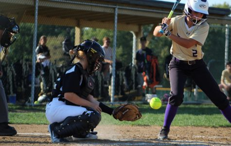 9-11 JV Softball vs Troy [Photo Gallery]