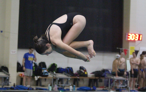 Senior Kamryn Bell dives into the pool at the St. Peters Rec-Plex
