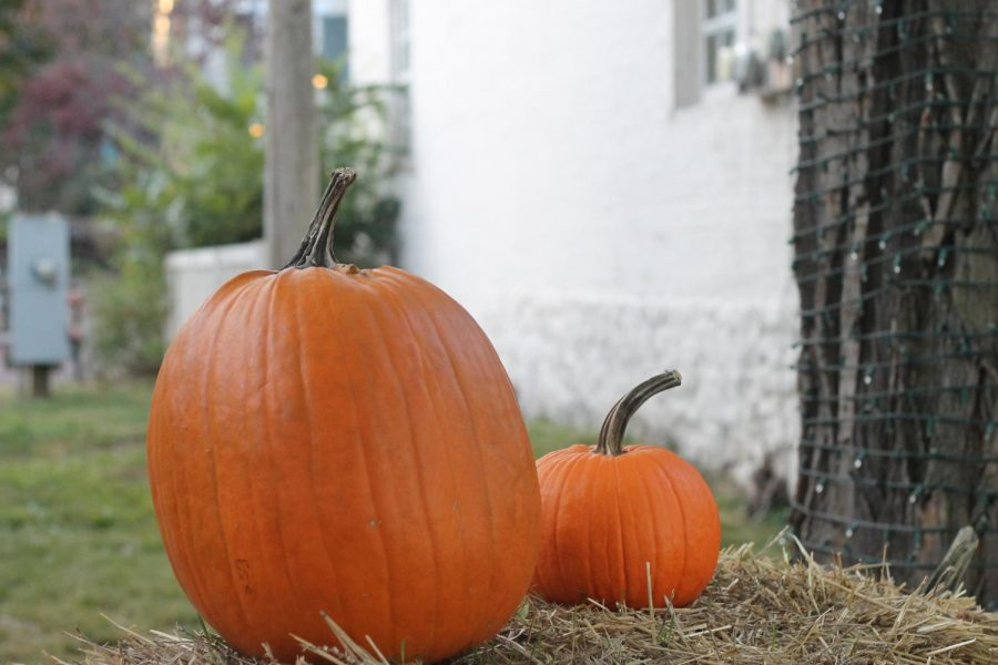 Saturday%2C+Oct.+26%3A+National+Pumpkin+Day.%0A%0AThis+holiday+was+made+to+celebrate+the+squash+that+is+such+a+big+part+of+Halloween.+Fun+Fact%3A+Pumpkins+are+actually+fruits.
