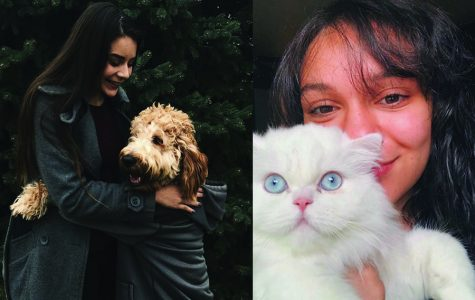 FHN Students Make Instagrams For Their Pets