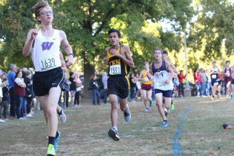 Boys Cross Country Season By the Numbers [Infographic]