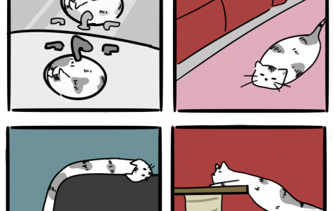 Cats Are Liquid [Comic]