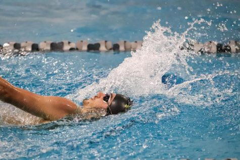 "FHN Boys Swim Team has a ""Tri-Meet"" at the Rec-Plex with FHHS and FHC [Photo Gallery]"