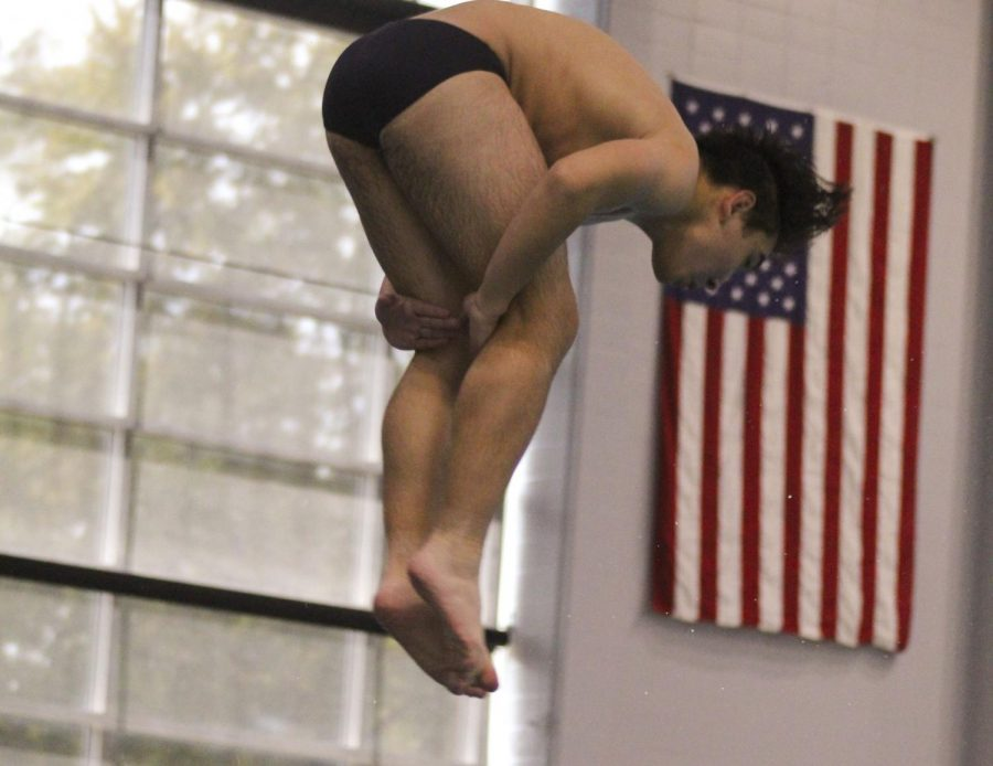 On Sept. 29, Logan Shelfaut dives at a meet at the Rec Plex vs. Fort Zumwalt South.