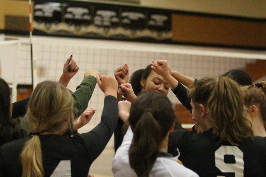 Girls JV Volleyball Loses to Troy Buchanan High School [Photo Gallery]