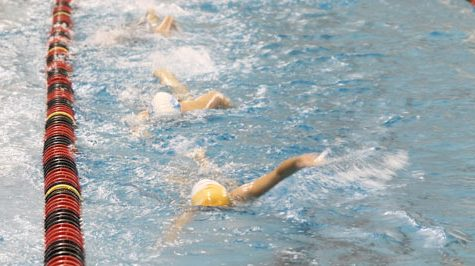 Girls Swimming Tryouts [Photo Gallery]