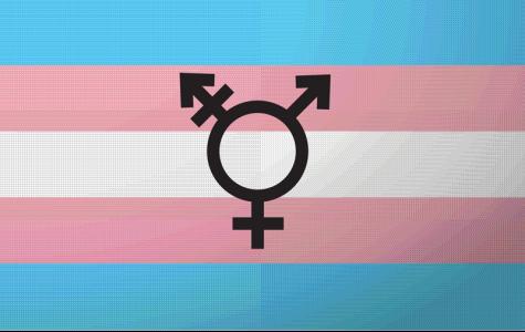 Nov. 14-20 Marks Transgender Awareness Week