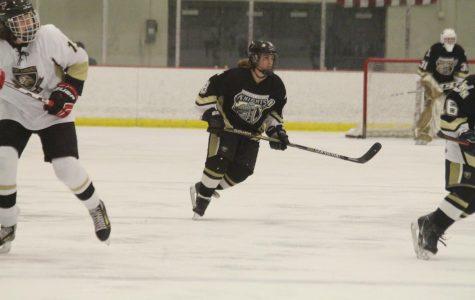 Ice Hockey Looks for a Bounce-Back Season